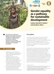 Thumbnail Of GenderClimateBrief