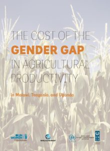 Thumbnail Of The Cost Of The Gender Gap In Agricultural Productivity