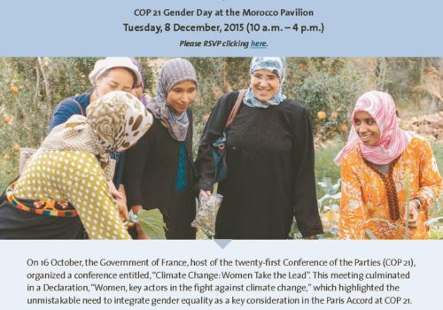 Thumbnail Of Women Active And Engaged In The Fight Against Climate Change