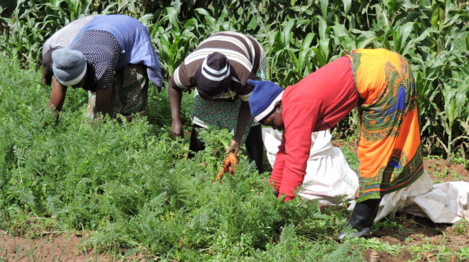 Increasing Women's Access To Agricultural Finance Through The Women Affirmative Access Window (WAAW)